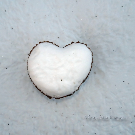 snow and wood heart